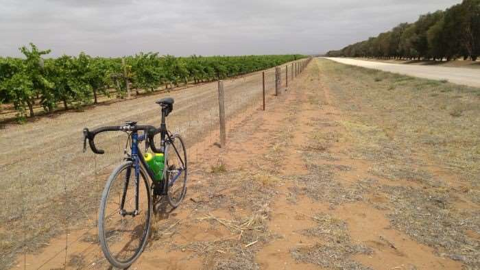 JOM's steed, vineyards and dirt roads.