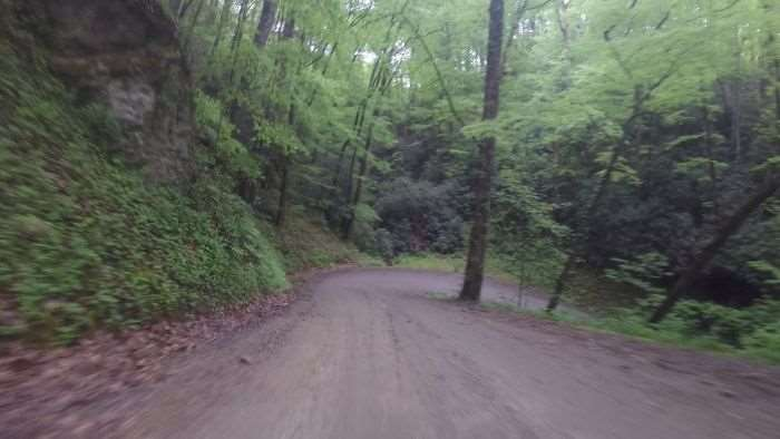 One of the tricky hairpin turns along Maple Sally Road.